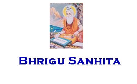 Bhrigu Samhita Hindi Book